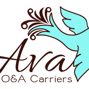 Ava Baby Carrier