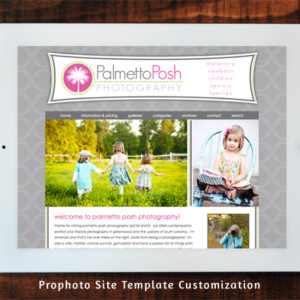 Palmetto Posh Prophoto Template Customization