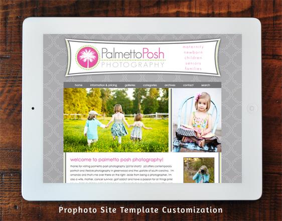 Palmetto Posh Prophoto Template Customization