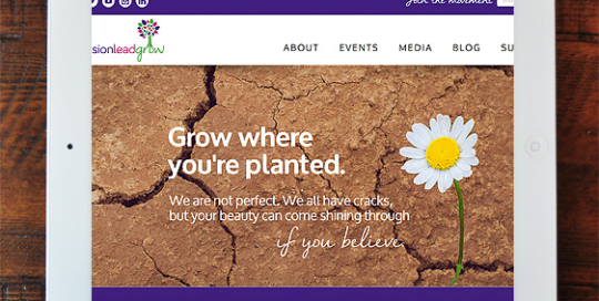 Envision Lead Grow Full Site Design on Wordpress/Avada