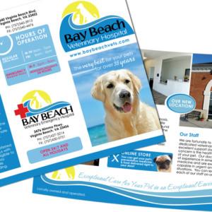 Bay Beach Veterinary Hospital Trifold Brochure Design