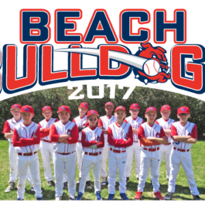 Baseball Team Large Vinyl Banner Design