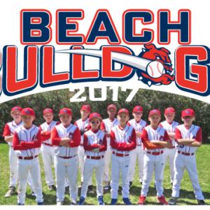 Baseball Team Large Vinyl Banner Design