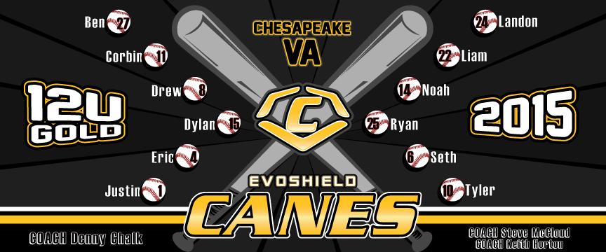 Baseball Team Large Vinyl Cooperstown Banner Design