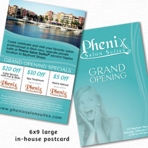 Phenix Salon Large Postcard
